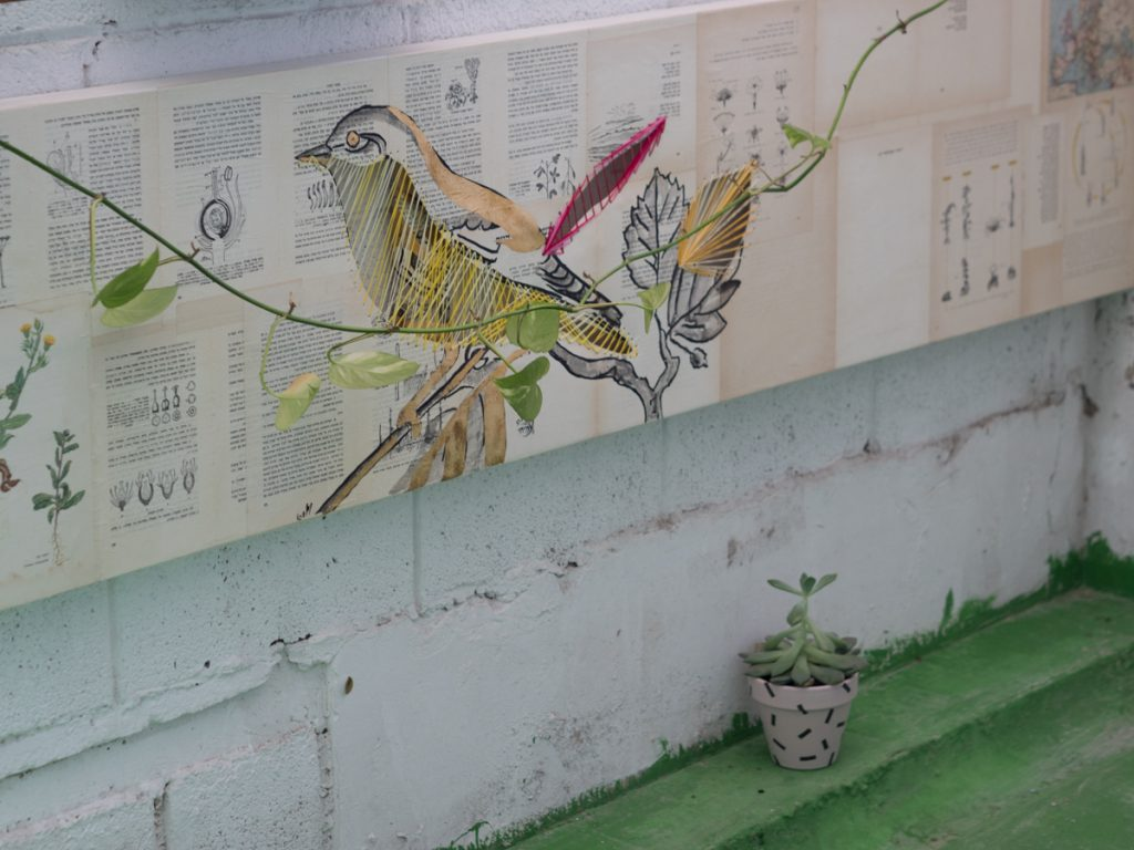קרן פרגו סטודיו מעיין צבי