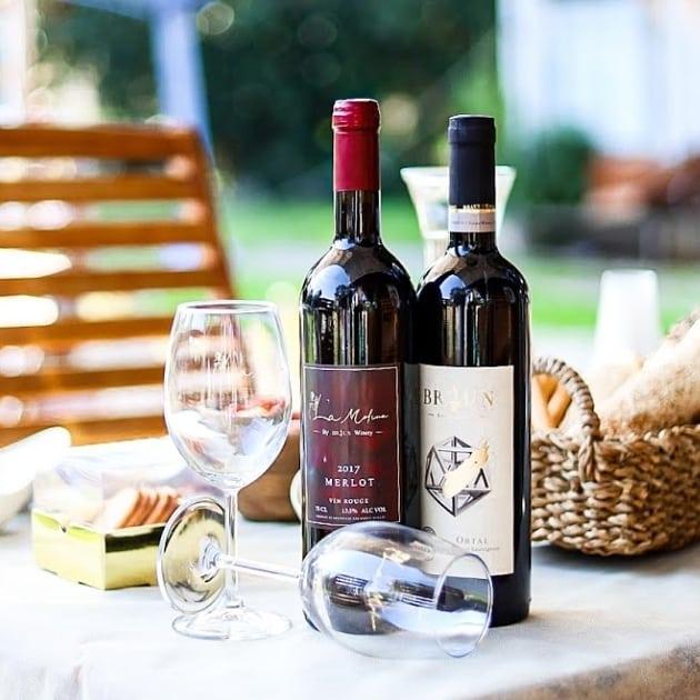 עינת סולטן לה מולינה יזמית יין