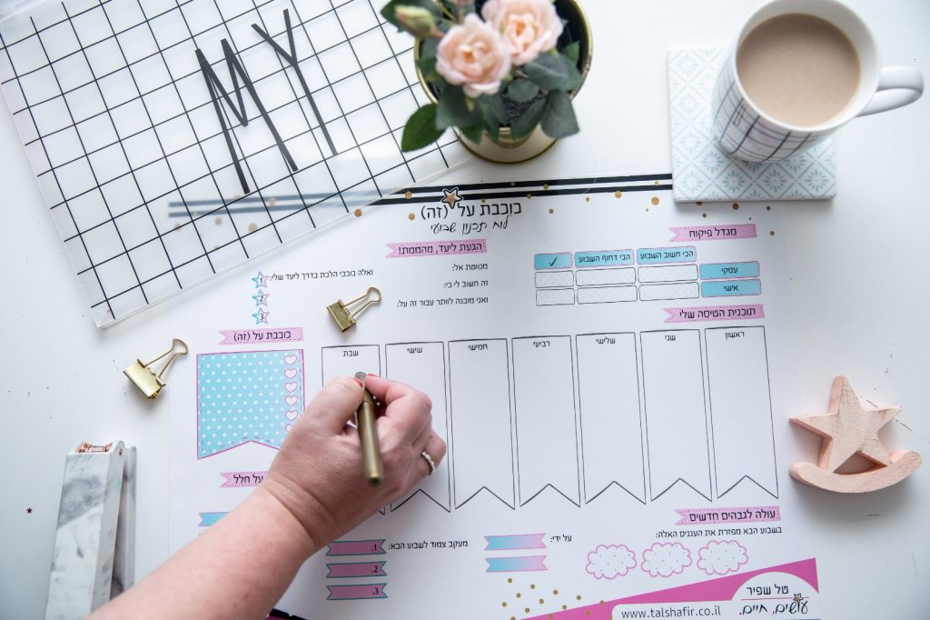 לוח התכנון השבועי של טל שפיר