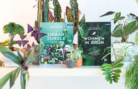 עולם ירוק וקהילתי מדהים: ראיון עם היזמים של הבלוג Urbanjungle
